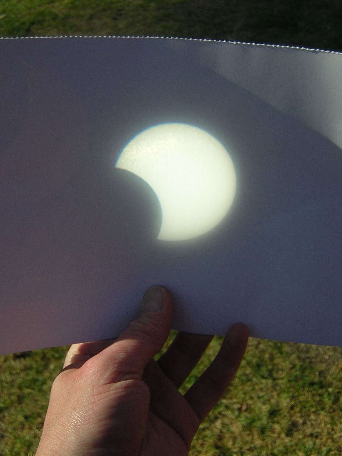 Partial eclipse, 26th January 2009, Perth